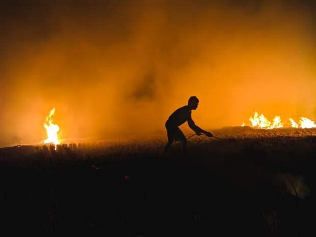 Лесной пожар произошёл в ижевском парке Кирова