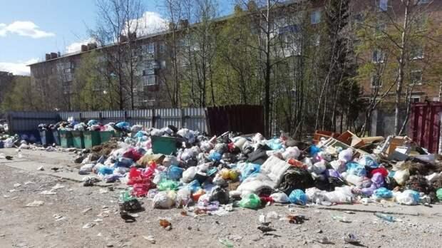 Абрамченко разъяснила цель хакатона по обращению с отходами