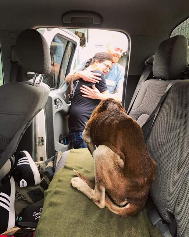 Кто-то потерял собаку на вершине огромной горы… Но 6 недель в одиночестве не сломили её дух!
