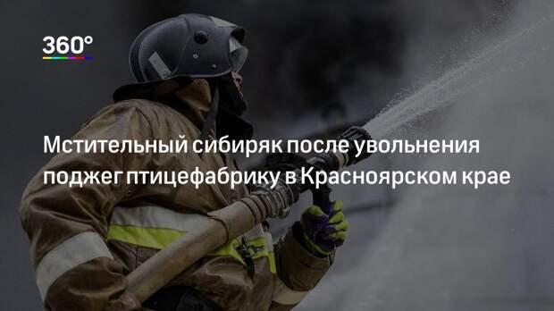 Мстительный сибиряк после увольнения поджег птицефабрику в Красноярском крае