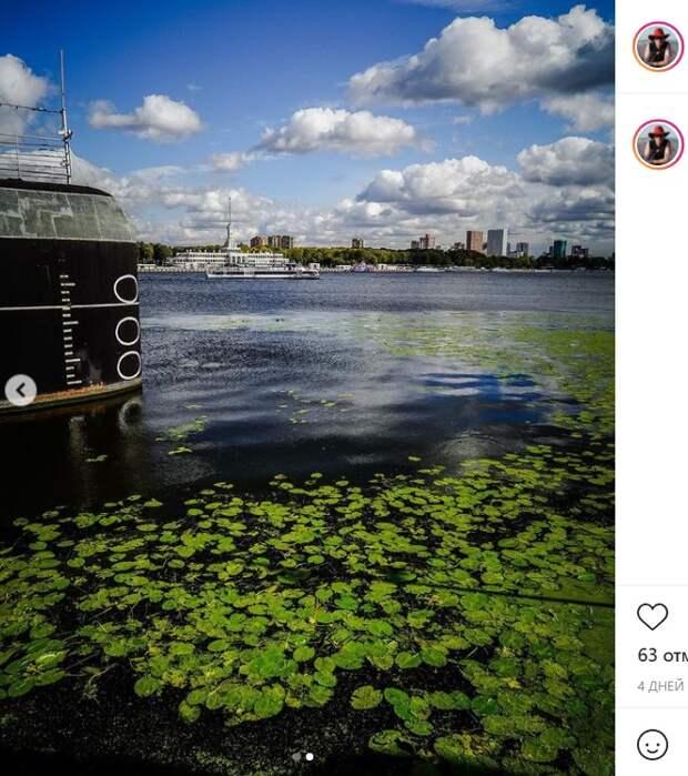 Фото дня: кувшинки «захватили в плен» подводную лодку