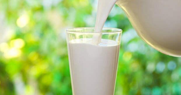 10 любопытных фактов о молочных продуктах