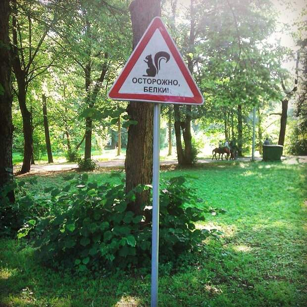 Территория грабежа и повышенного бандитизма дорожный знак, знак, знаки, неведомая херня