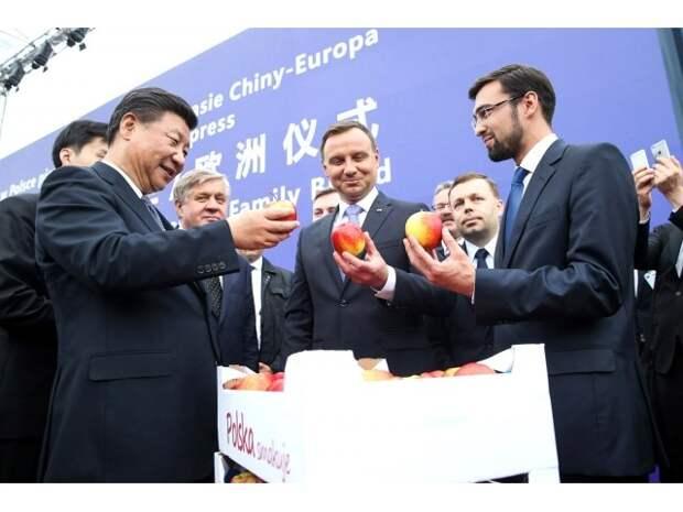 Заигрывания Польши с Китаем не нравятся США и ЕС