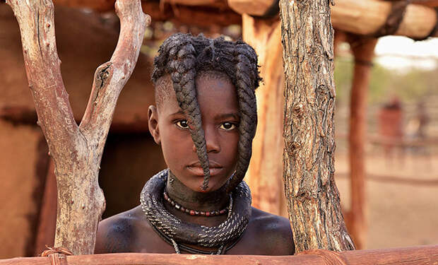 Народ Тубу живет в сердце Сахары, ест в основном финики и почти не стареет: видео