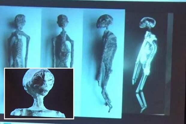 В Перу найдены тела пришельцев со звезд? Наска, археология, гуманоиды, загадка, инопланетяне, мумии, находка, перу