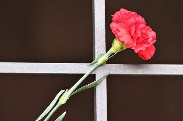 Под Калининградом найдена братская могила советских воинов