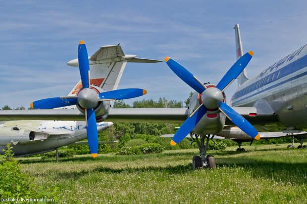Aviation Museum-37