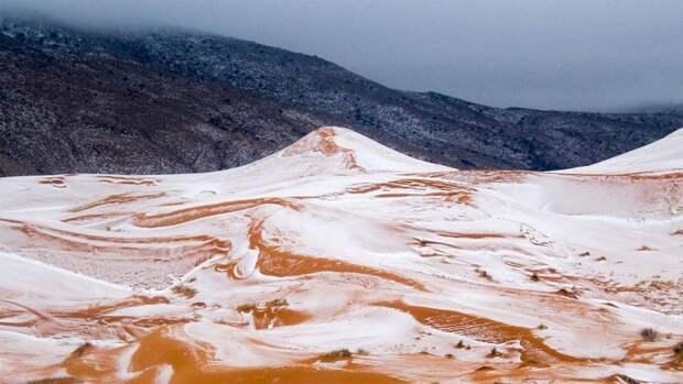Невероятные фотографии заснеженной пустыни Сахара, в которой впервые за 40 лет выпал снег