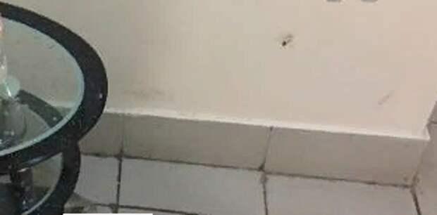 Трупы тараканов убрали из подъезда дома по 2-ой Кабельной
