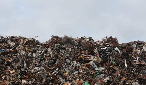 Работу мусорного оператора раскритиковал замглавы Белокалитвинского района