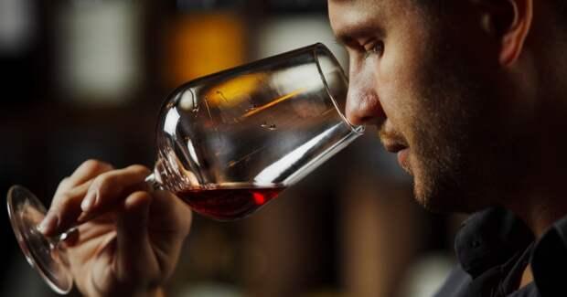 Существует ли «порошковое вино» и почему не стоит его бояться