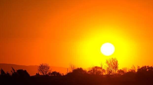 Природа дарит жителям Удмуртии летнее тепло