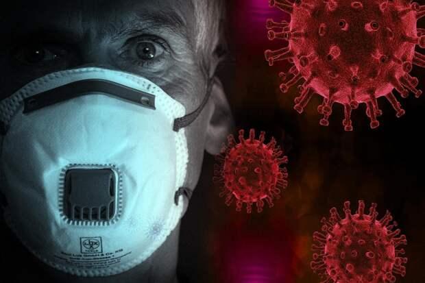 Стало известно, сколько штаммов коронавируса выявлено в России