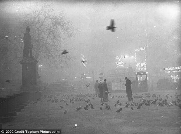 Великий смог в Лондоне и 12 000 погибших. Декабрь 1952 года