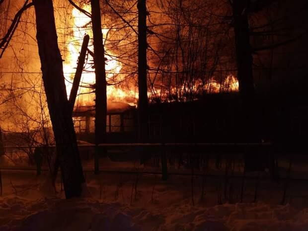 Нижегородцев предупредили о высокой пожароопасности лесов