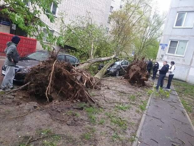 В Чехове экстренные службы ликвидируют последствия урагана