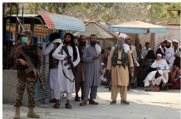 В победе талибов увидели плохую новость для Сирии