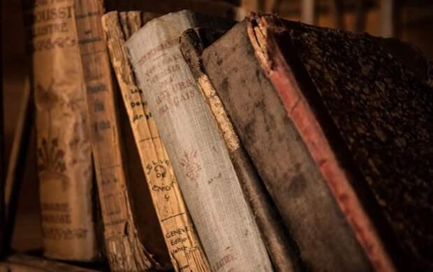 Библиотеки Лефортова вернулись к прежнему режиму работы