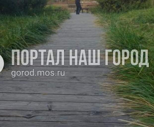 На опасной дорожке в парке «Дубрава» закрепили балки