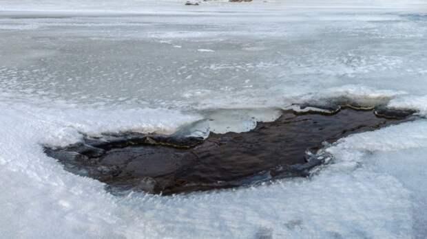 Труп шестилетнего мальчика достали из реки под Новосибирском