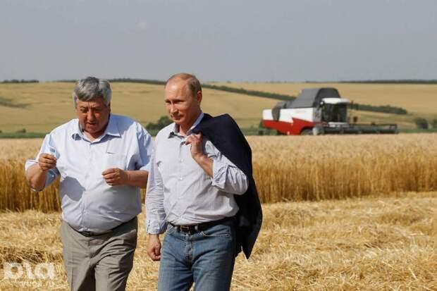 Россия стала главным мировым экспортером пшеницы