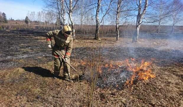 Девять раз за сутки сухая трава имусор загорелись натерритории Нижнего Тагила