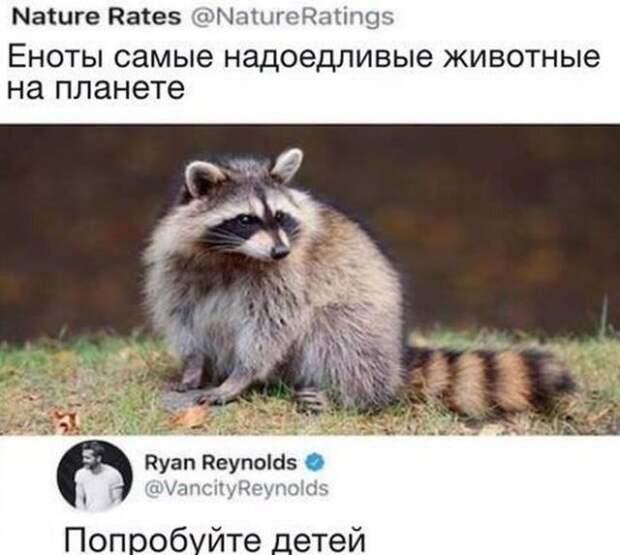 """Шутки и мемы про """"яжматерей"""", детей и семейные отношения"""