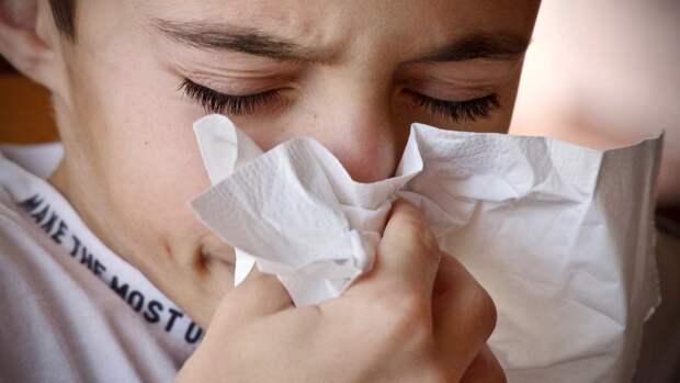 Иммунолог рассказал, почему нельзя бороться с аллергией с помощью лекарств