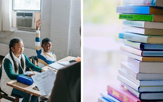 Школьникам привозит книги необычный библиотекарь: у него шерсть и два горба