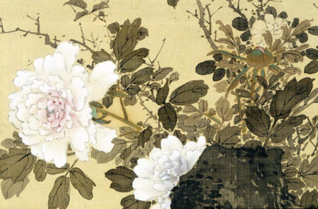Doves and Peonies (detail) (500x329, 220Kb)