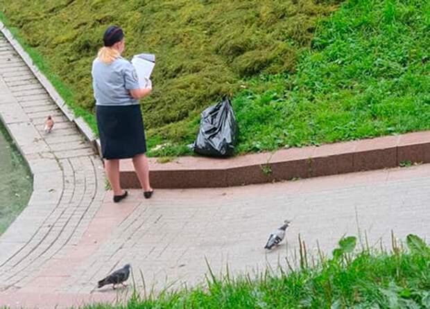 «Лежал на берегу мертвый»: в Москве убили лебедя на Патриарших прудах
