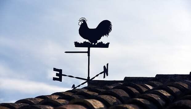 Синоптики предупредили жителей Московского региона об усилении порывов ветра