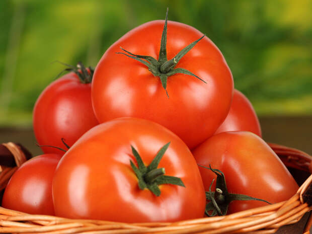 Basket, Organic Food, Food, помидоры (photo 0002997314JJ) stock photo image buy and download from royalty free photo stock Photl