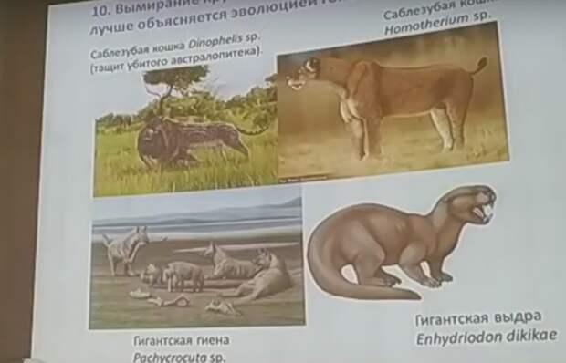 Лекция об открытиях в эволюционной биологии началась в Ижевске