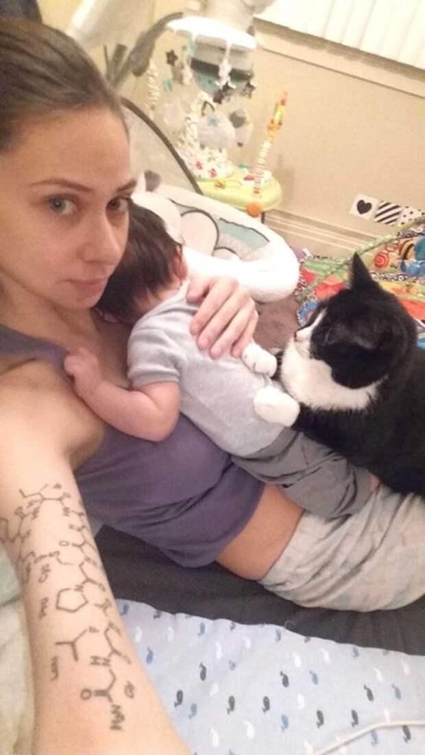 Самая заботливая няня забота, кошка, младенец