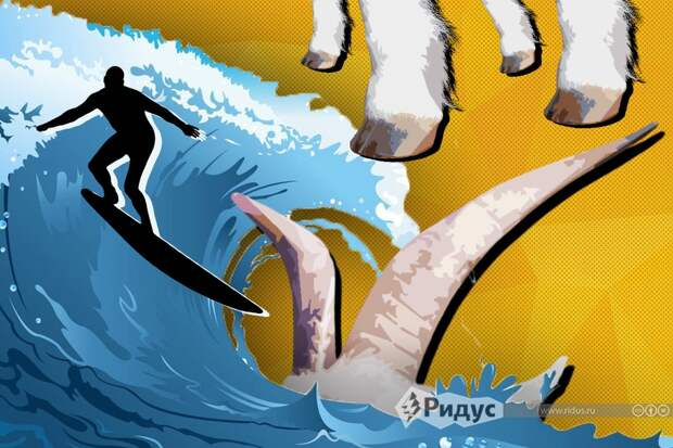 Инструктор по серфингу взял на работу двух помощников: у них рога и копыта