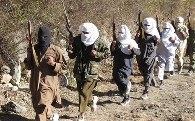 Похоже талибы не собираются договариваться с Кабулом и Америкой о мире
