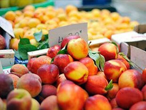 Новость на Newsland: Россельхознадзор задумался о запрете на импорт греческих фруктов