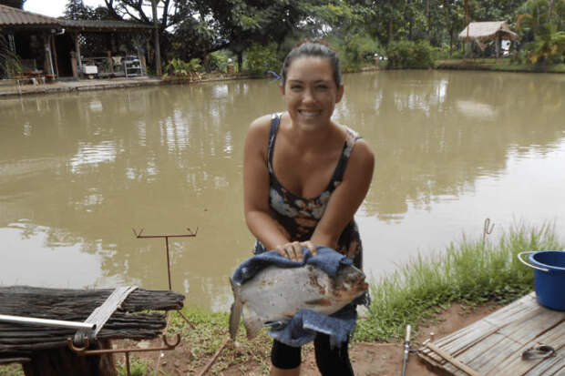 Как ловят пираний в Бразилии: проволока вместо удочки