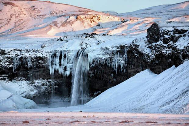 Прелесть зимы