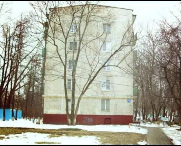 Сколько стоит хрущевка 3 комнатная в разных городах России