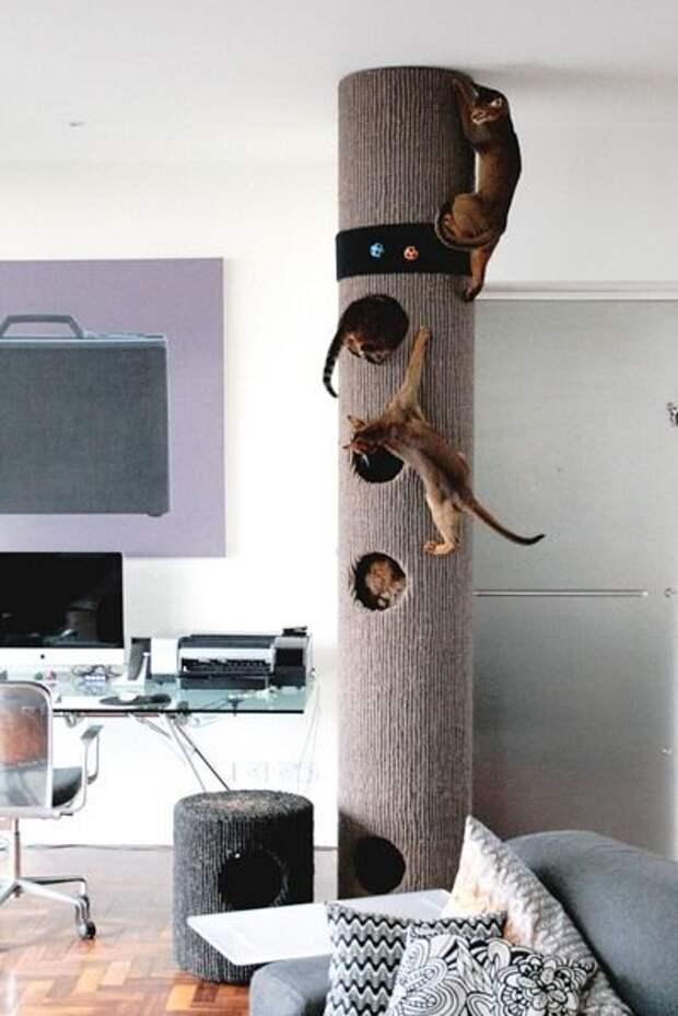 Эффектные домики для домашних животных