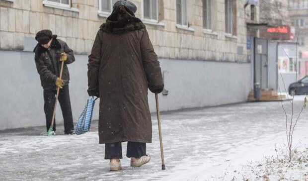 ВКазани могут закрыть приют для бездомных