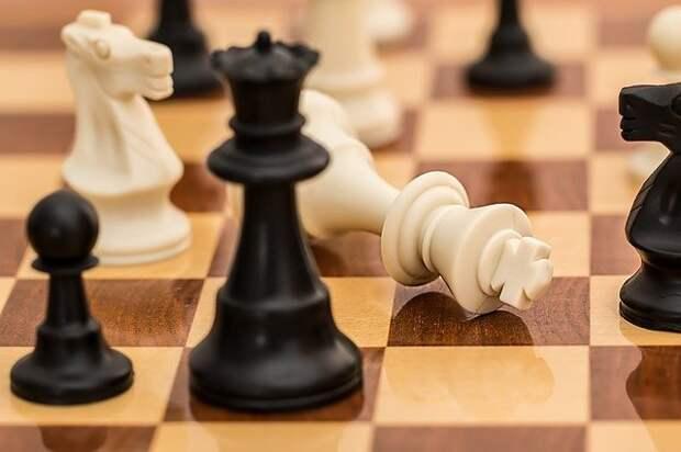 В ДК «Берендей» возобновил работу шахматный клуб