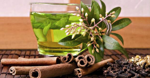 Чай с корицей и лавровым листом для контроля над весом и ускорения метаболизма
