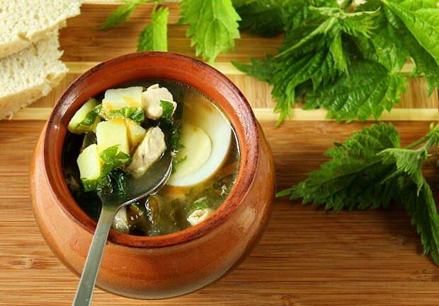 И вкусно и полезно! Интересные блюда из дикорастущей зелени