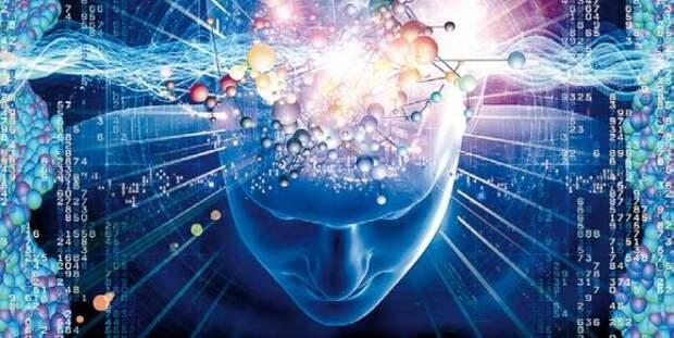 Новая карта мозга позволит читать мысли на уровне отдельных слов