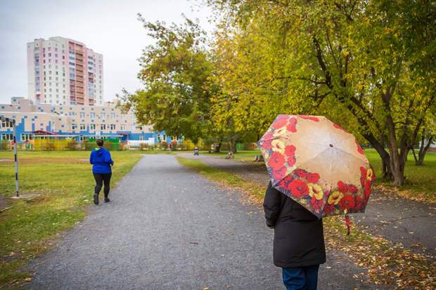 Потепление до плюс 11 вернется в Новосибирск на один день