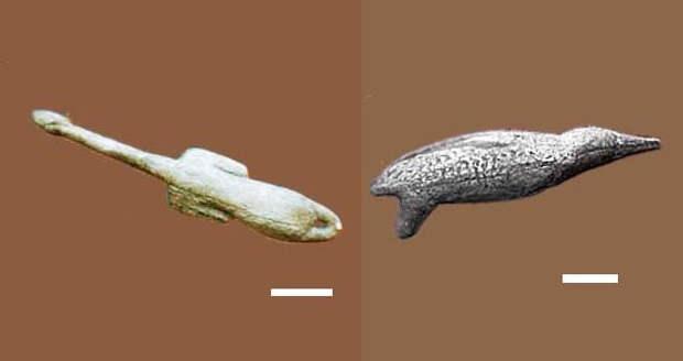 Геном сибирского кроманьонца указывает на связь индейцев с европейцами